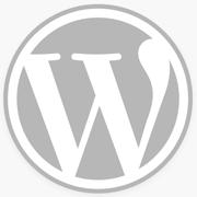 ワードプレスでサイト内検索をかけた時の、検索結果数を表示させたい。